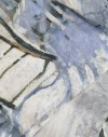 Foulard en soie Monet - La Pie