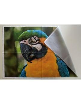 Votre grande photo imprimée sur tissu - 45x45 ou 40x60 cm