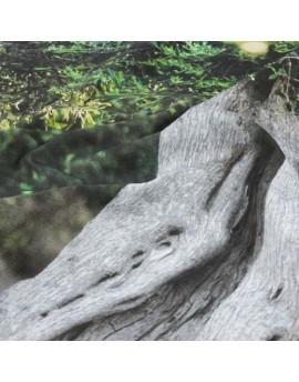 Foto impresa en lienzo de algodón