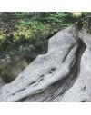 Foto impresa sobre tela de lienzo de algodón