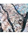 Snood en soie arbre niege